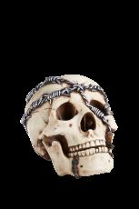 STIGMATA Schädel Stacheldraht